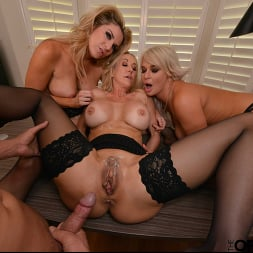 Brandi Love in 'VR Naughty America' Brandi Love, Kayla Paige, and London River bang the new guy for meeting the sales quota (Thumbnail 117)