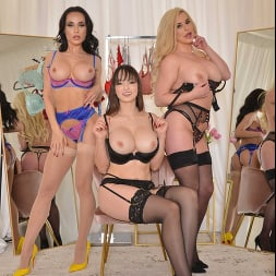Crystal Rush in 'VR Naughty America' Crystal Rush, Lexi Luna, and Spencer Scott fuck a wealthy lawyer in The Dressing Room in exchange for sexy lingerie  (Thumbnail 204)